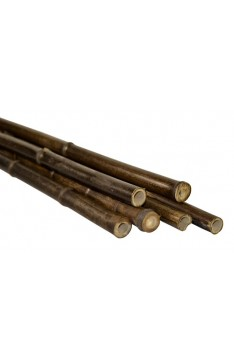 Natural black bamboo pole 20/25mm x 3 mtrs