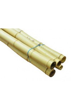 Natural yellow bamboo pole 20/25mm