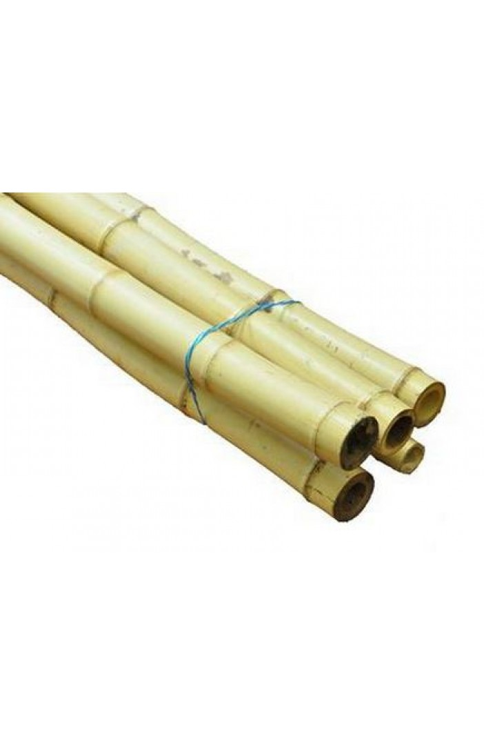 Bamboo For Natural Areas 18