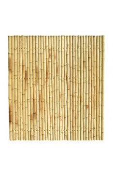 Natural Solid Trendline Bamboo Panel 40mm  1.8 mtr x 1.8 mtr