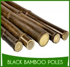 Black Bamboo Poles (6)