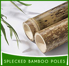 Speckled Bamboo Poles (3)